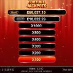 13 Fortune Jackpots Progressive Bonus