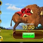 22 Buffalo Bucks Bonus Level 1