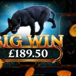 3 Big Win